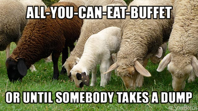 Sheep eating meme: All-You-Can-Eat-Buffet or until somebody takes a dump.
