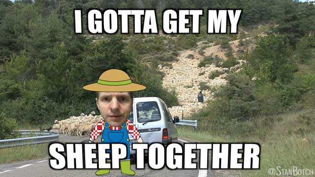 Stan Botch and a flock of sheep meme: I gotta get my sheep together.