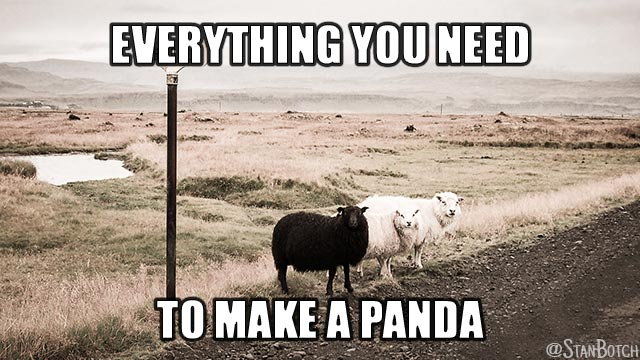 Two white sheep and one black sheep meme: Everything you need to make a panda.