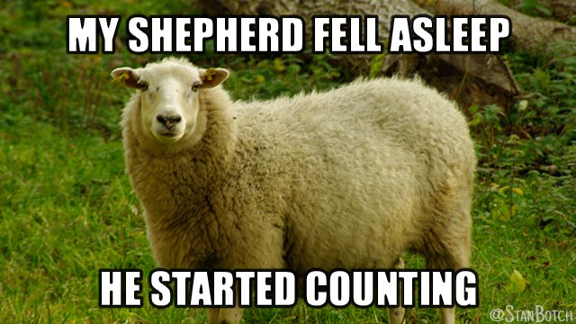 Funny Black Sheep Meme : Funny sheep memes botch